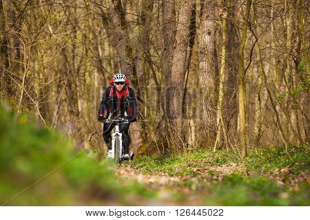 Cyclist Riding the Bike on the Trail in the Beautiful Spring Forest Wide Angle