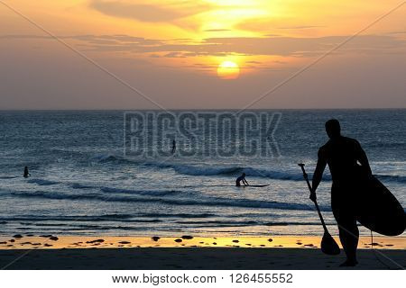 silhouette of surfer  board paddling on the backgrounf od swa during sunset where there are another surfers in the water