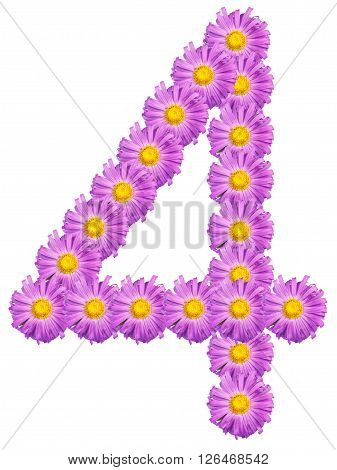 Number 4 Composed Of Colors Purple Asters. Isolated On White Background