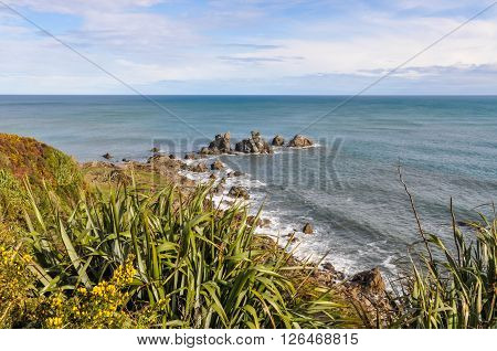 Coastal View In Cape Foulwind, New Zealand