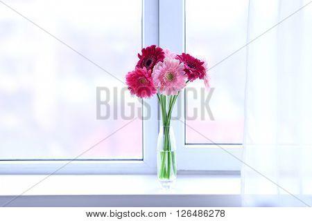 Gerbers on the windowsill
