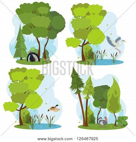 wildlife scenes. isolated scene with wild birds. heron flies over the lake. in the woods is grouse and turkey. duck is flying over the river. vector.