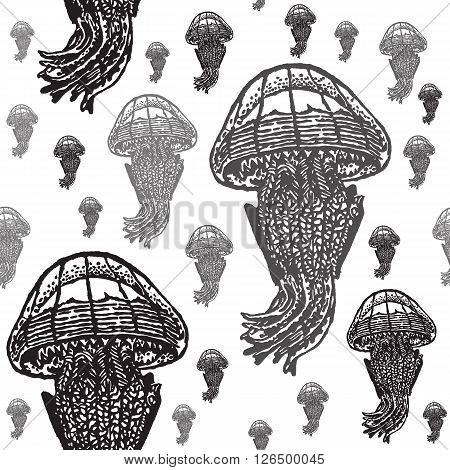 Jellyfish black and white seamless vector pattern. Realistic engraved style of jellyfishes on white background.