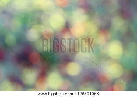 Bokeh Effect In The Background Illustration To Create A Background For A Picture. Background Of Colo