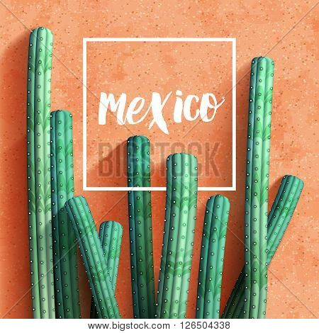 Mexican realistic background with cacti. Vector illustration.