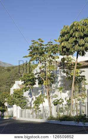 White Andalusian traditional house in Marbella Andalusia Spain