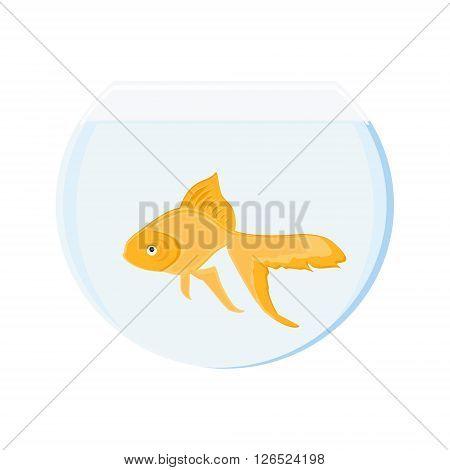 Vector illustration realistic goldfish in bowl. Gold fish swimming in transparent round glass bowl aquarium
