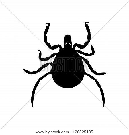 Vector illustration dangerous parasite mite black silhouette. Mite skin icon