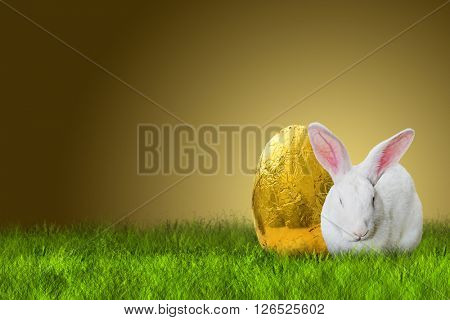 Easter bunny and golden Easter egg on white background