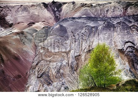 young birch trees in front of the ruined layers of soil with landslides of slag and sand at the lignite (brown coal) open pit mining Garzweiler Germany a significant intervention in nature and the environment for a fossil fuel with poor calorific value