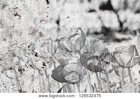 Abstract Background Of Tulips On The Old Wall