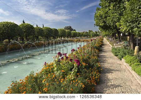 Early morning at the gardens of the Alcazar of the Catholic Monarchs in Cordoba, Spain