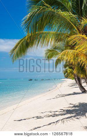 White sand on a tropical beach Le Morne Mauritius.