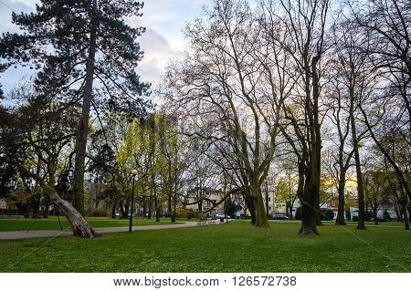 Veterans Park - Polish: Park Kombatantow - commonly called Koelichenow Park -named after the last owners - park in Warsaw, in the district of Wlochy in the area of Nowe Wlochy.