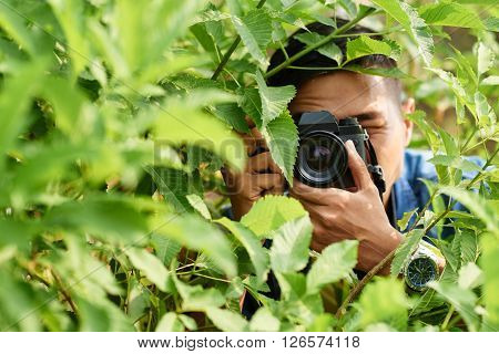 Asian nature photographer taking photos in forest