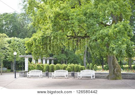 August, 2015  - Tallinn, Estonia. Kadriorg  park in Tallinn is the Catherine's Valley commissioned by the Russian Czar Peter the Great.