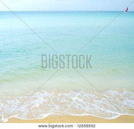 Waves, sea & surf