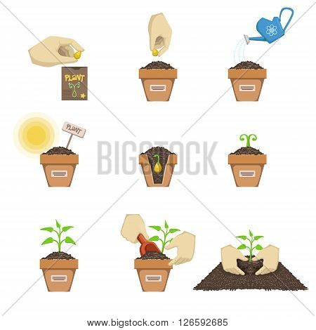 Planting The Seed Sequence Cartoon Simple Style Flat Vector Illustrations Set On White Background