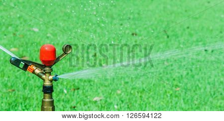 Water sprinkler in the medow.A device that allows automatic watering grass.