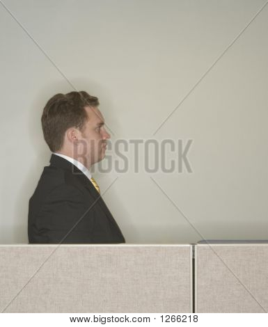 Businessman Profile
