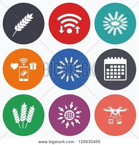 Wifi, mobile payments and drones icons. Agricultural icons. Gluten free or No gluten signs. Wreath of Wheat corn symbol. Calendar symbol.