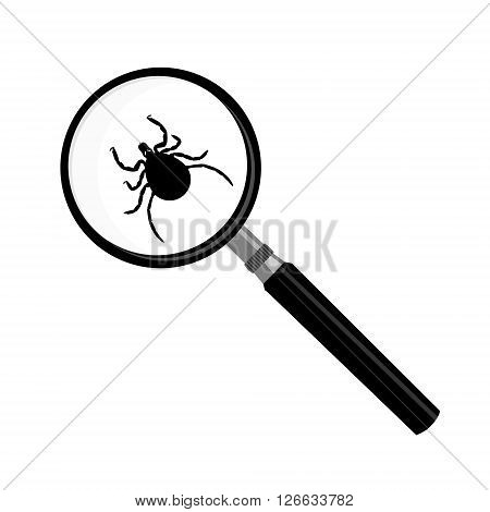 Vector antivirus scanning icon. Vector illustration mite insect under magnifying glass