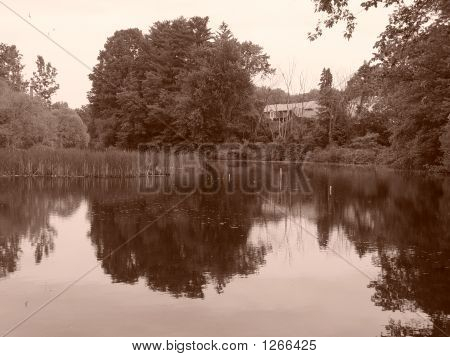 Sepia Still Pond Massachusetts