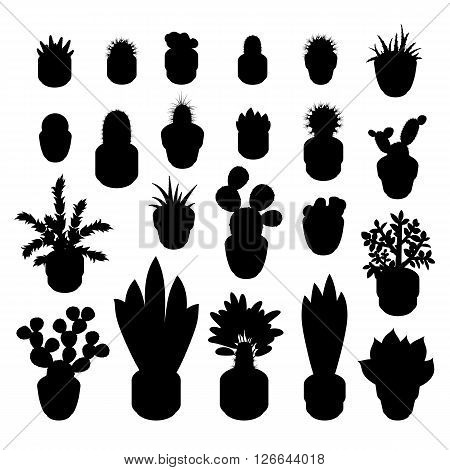 Silhouettes of cacti and succulents. Silhouettes indoor plants isolated on white background. Big set of silhouettes of indoor plants in pots. Vector illustration.