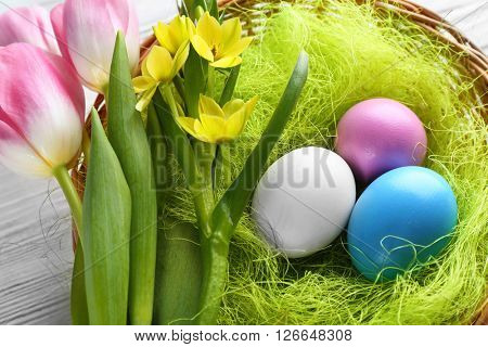 Easter eggs in nest with spring flowers on white wooden table