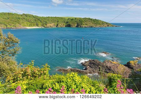 View across Salcome estuary to Sunny Cove secluded beach Devon UK