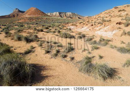 Arid landscape in Zaragoza province, Aragon, Spain.