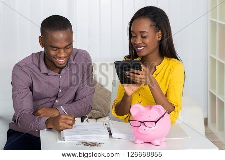 Happy Couple Calculating Bill