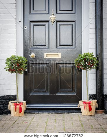 A Pair Of Potted Holly Plants On A Doorway
