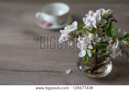 Closeup of fresh spring flowers in vase on table