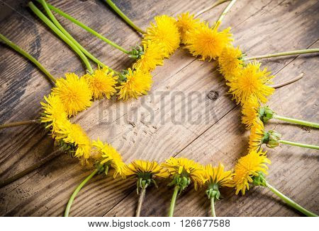 Arrangement of yellow dandelions in the heart shape on wooden background