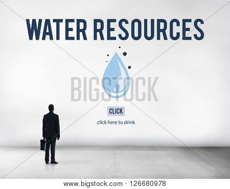 Water Resources Forest Trees Plant Natural Dam Concept