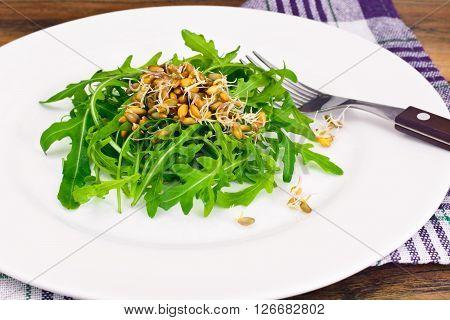 Arugula Salad with Germinated Grain in White Plate. Studio Photo