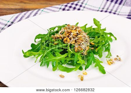 Arugula Salad with Germinated Grain in White Plate. Studio Photo
