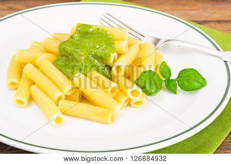 Penne Pasta with Pesto and Basil Sauce Studio Photo