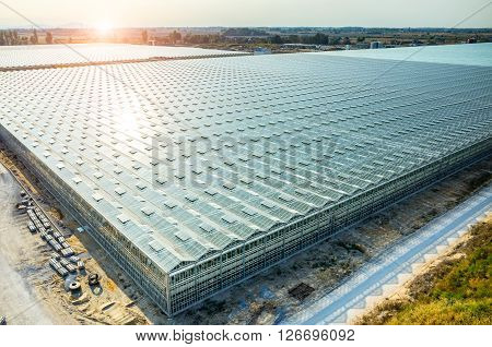 Large Modern Greenhouse