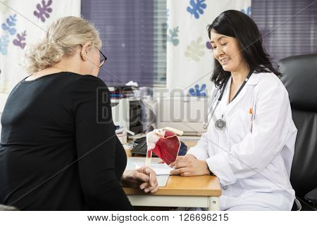 Female Doctor Explaining Shoulder Rotator Cuff Model To Senior P