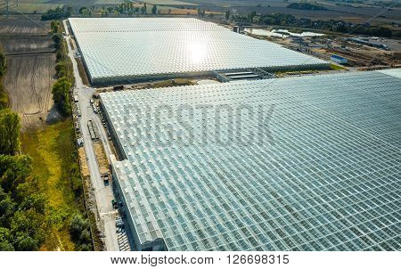 Aerial View On The Greenhouse