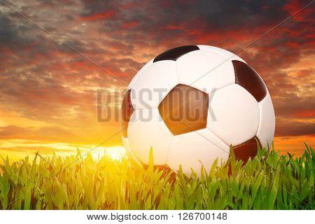 soccer ball on the grass - football
