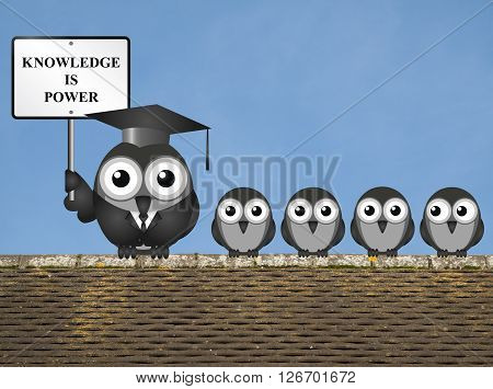 Knowledge is power sign with bird teacher and students perched on a rooftop against a clear blue sky