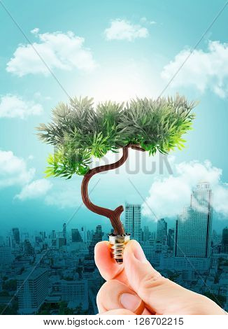 Hand Holding Tree Refreshing On Light Bulb On Sky With Cloud And Cityscape,eco Concept,clear Polluti