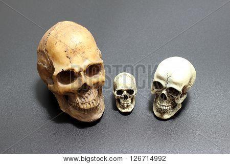 Human Skull On Black Background Of Surface Sand, Still Life Style.