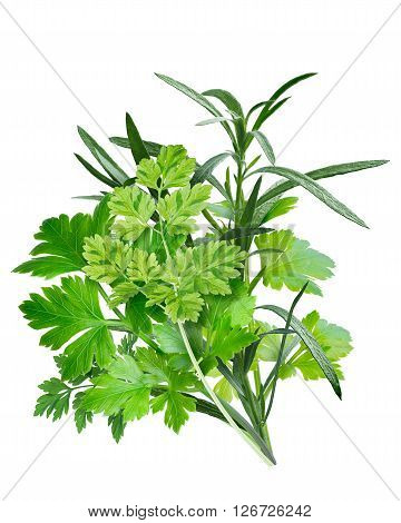 Fines Herbes (combination Of Herbs)