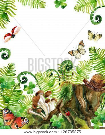 Forest watercolor background. Woods stump mushroom leaves moss lady bug and butterfly. Watercolor natural woods life card. Hand painted forest wildlife illustration