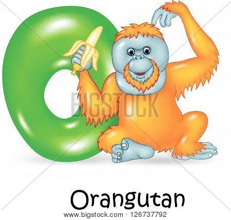 Vector illustration of O Letter for Orangutan