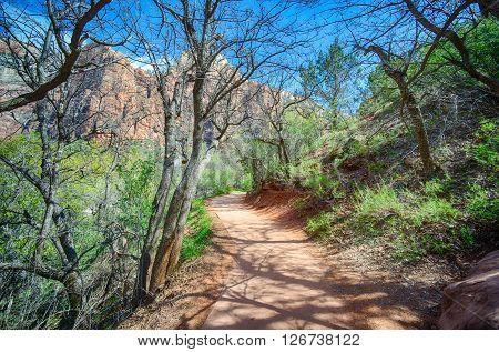 Hiking Trail In Utah